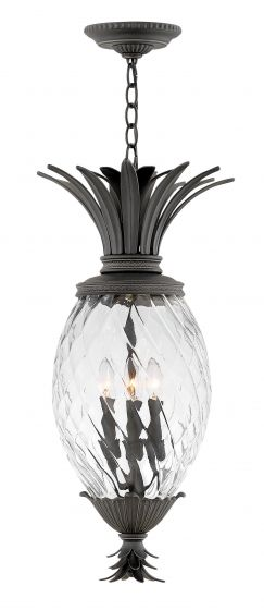 "Hinkley Plantation 4-Light 28.5"" Outdoor Hanging Lantern in Museum Black"