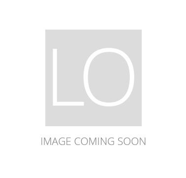Golden Lighting Duncan 4-Light Nook Chandelier in Chrome with Blue Shade