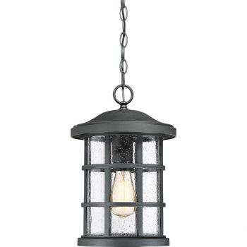 "Quoizel Crusade 10"" Outdoor Hanging Light in Earth Black"