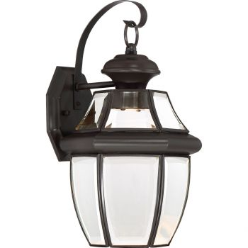 "Quoizel Newbury 8"" Outdoor Hanging Light in Medici Bronze"
