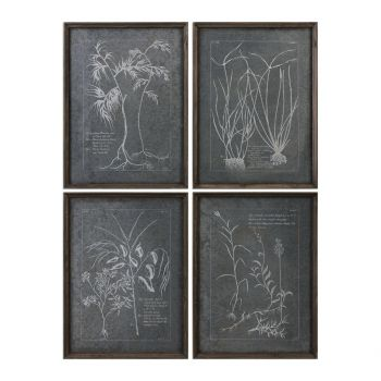 Uttermost Root Study Print Art in Natural Brown Stained Fir (Set of 4)