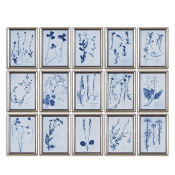 Uttermost Dried Flowers Floral Art in Silver Frame (Set of 15)