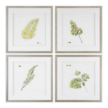Uttermost Watercolor Leaf Study Prints in Burnished Silver Frame (S/4)