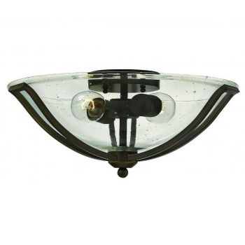 Hinkley Bolla 2-Light Ceiling Light in Olde Bronze with Clear Glass  Seedy