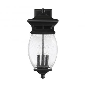 "Savoy House Seven Oaks 20.75"" 3-Light Outdoor Wall Lantern in Black"