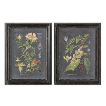 Uttermost Midnight Botanicals Wall Art in Distressed Black Frame (S/2)