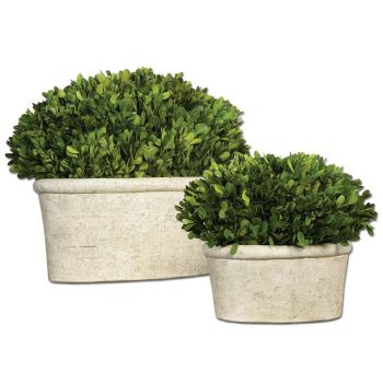 Uttermost Set of 2 Oval Domes Preserved Boxwood