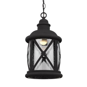 Sea Gull Lighting Lakeview LED Outdoor Pendant in Black