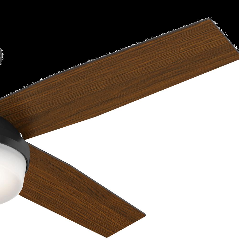 Hunter Dempsey 2 Light 52 Quot Indoor Outdoor Ceiling Fan In