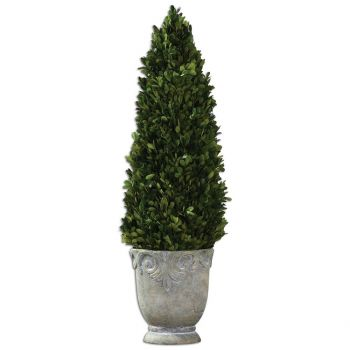 "Uttermost Boxwood 29"" Cone Topiaries in Light Stone"