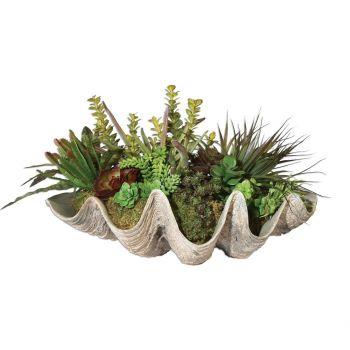 """Uttermost Sea Coast Succulents 26"""" Clam Shell Replica"""