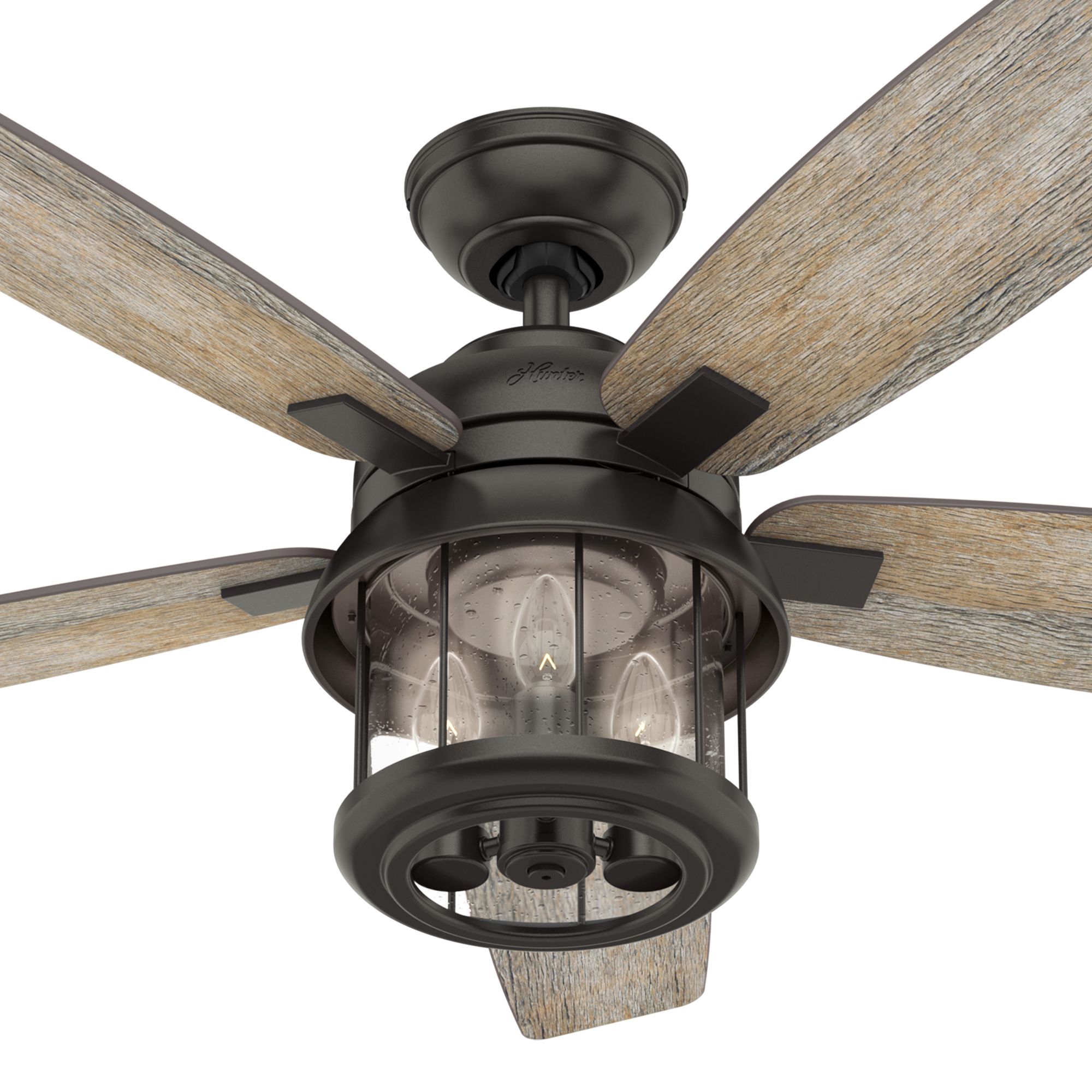 Hunter Fans Coral Bay Light Indoor Outdoor Ceiling