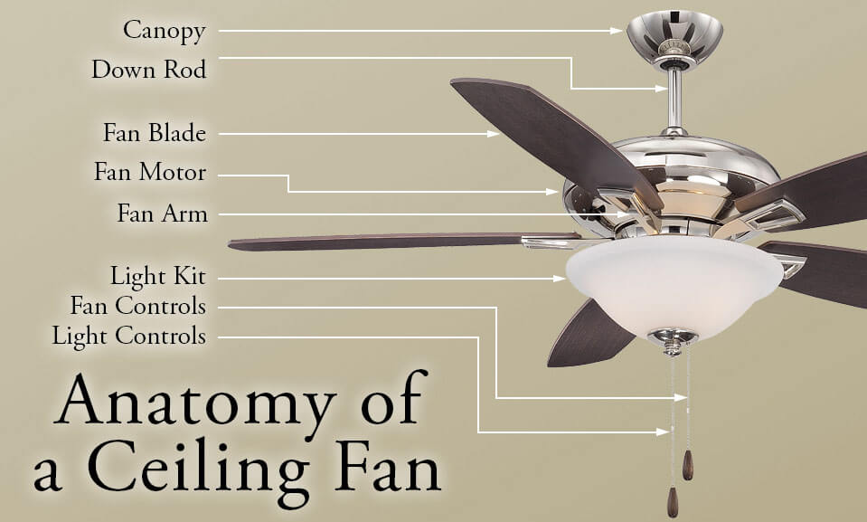 Anatomy of a Ceiling Fan - LightsOnline.com