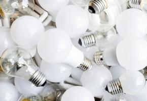 Light Bulbs 101
